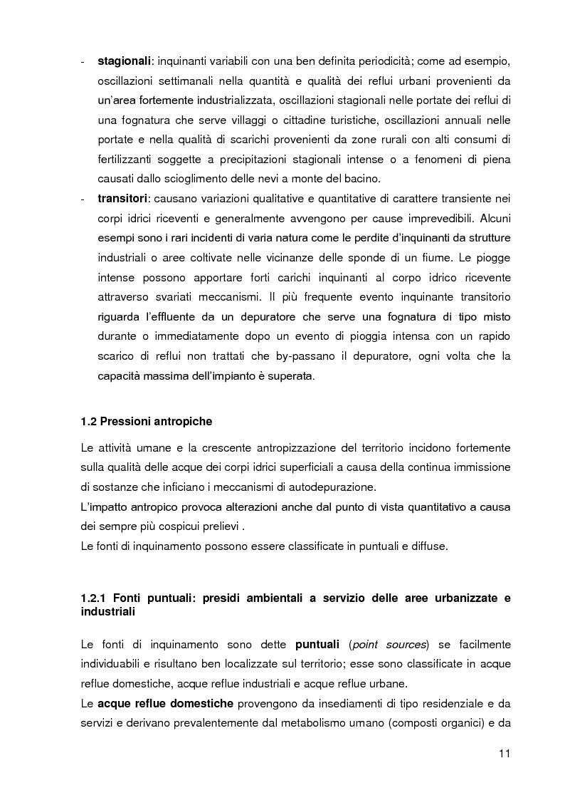 Anteprima della tesi: Bacini di trattamento e aree umide artificiali per la realizzazione di eco-sistemi filtro, Pagina 9
