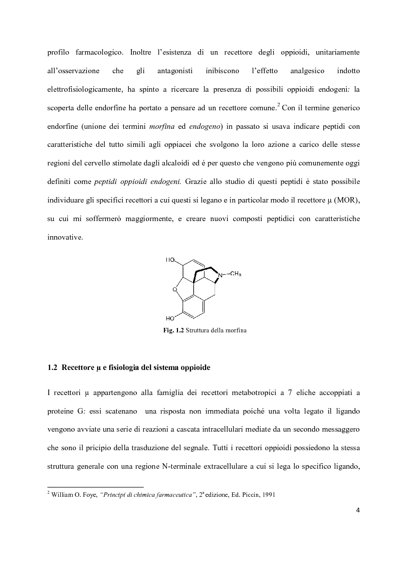 Anteprima della tesi: Sintesi di peptidi attivi verso MOR e studio dell'interazione ligando-recettore, Pagina 3