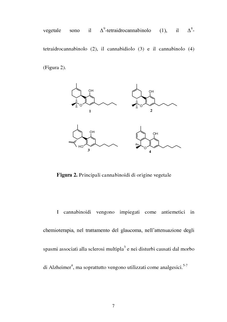 Anteprima della tesi: Sintesi di composti a nucleo pirrolico della serie n-metil-2-etil pirrolidinica ad attività cannabinomimetica, Pagina 5