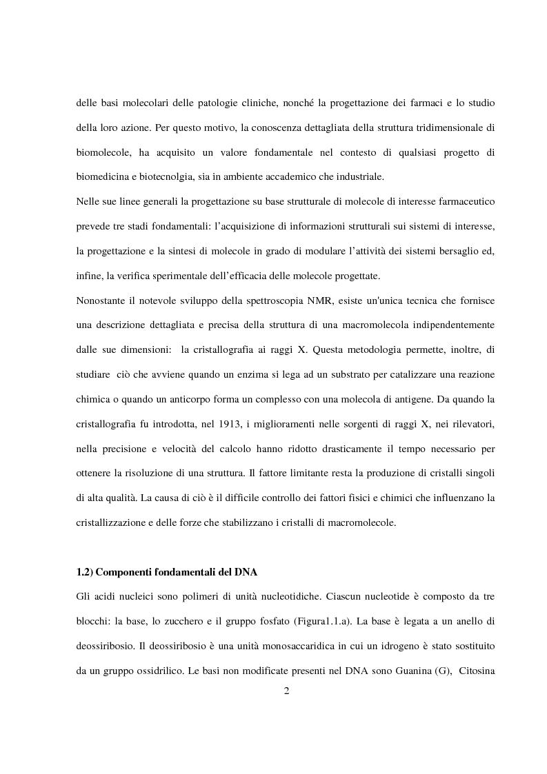 Anteprima della tesi: Caratterizzazione e cristallizzazione di sequenze oligonucleotidiche ricche in guanina formanti quadruple eliche di DNA, Pagina 3