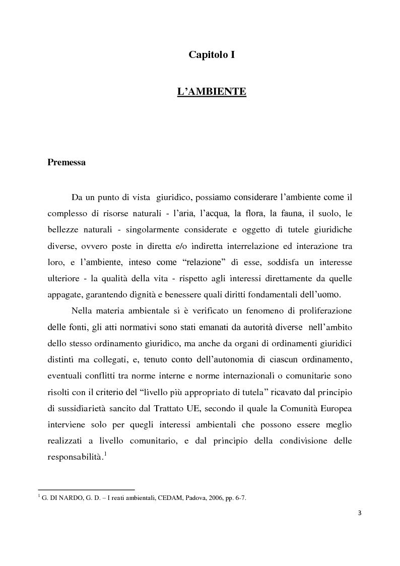 Anteprima della tesi: Le agro-energie, Pagina 2