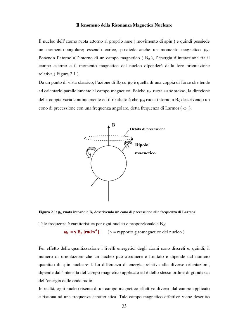 Anteprima della tesi: Caratterizzazione rilassometrica di vini ed aceti, Pagina 3