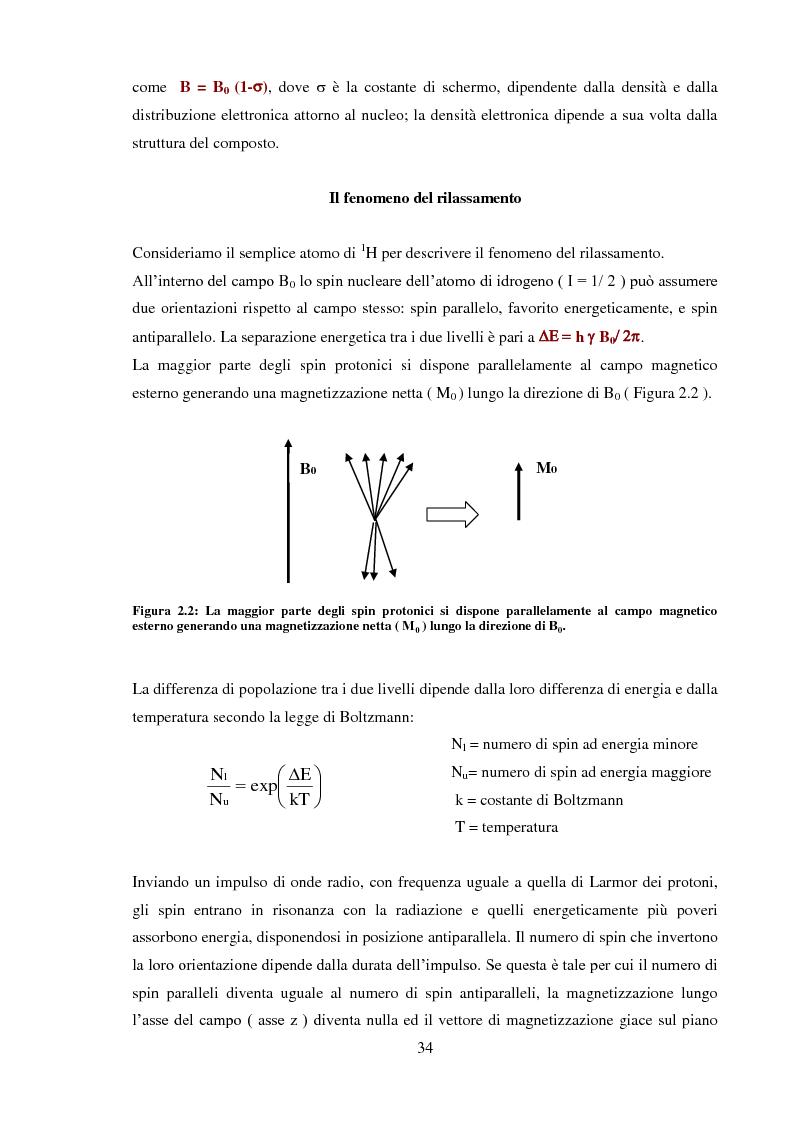 Anteprima della tesi: Caratterizzazione rilassometrica di vini ed aceti, Pagina 4