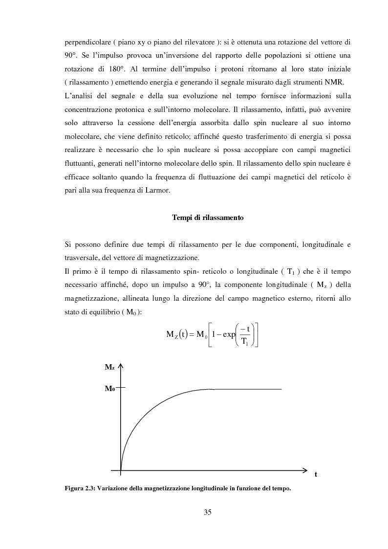 Anteprima della tesi: Caratterizzazione rilassometrica di vini ed aceti, Pagina 5