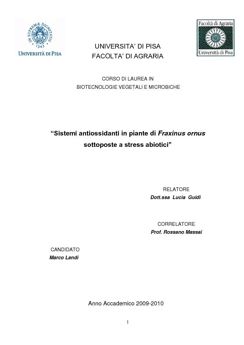 Anteprima della tesi: Sistemi antiossidanti in piante di Fraxinus ornus sottoposte a stress abiotici, Pagina 1