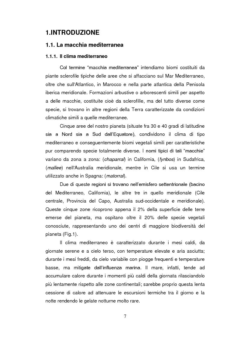Anteprima della tesi: Sistemi antiossidanti in piante di Fraxinus ornus sottoposte a stress abiotici, Pagina 2