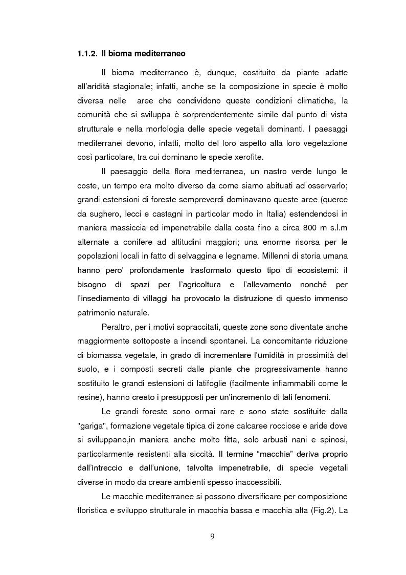 Anteprima della tesi: Sistemi antiossidanti in piante di Fraxinus ornus sottoposte a stress abiotici, Pagina 4