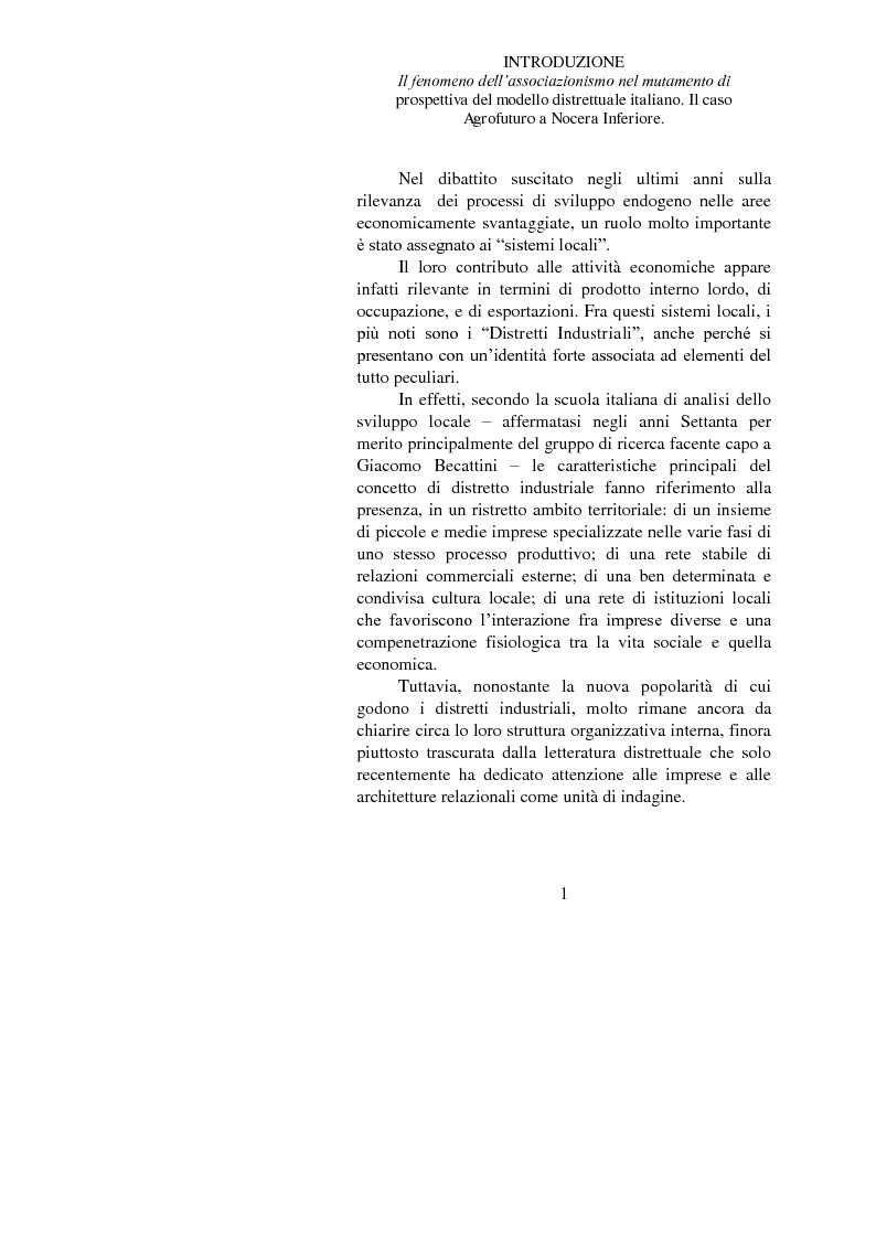 Il fenomeno dell'associazionismo nel mutamento di prospettiva del modello distrettuale italiano. Il caso Agrofuturo a No...