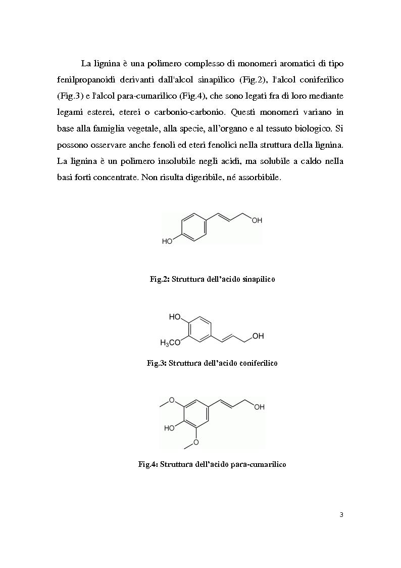 Anteprima della tesi: Sintesi e caratterizzazione delle nanoparticelle di platino, Pagina 3