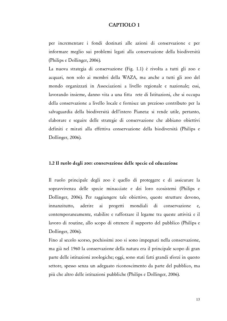 """Anteprima della tesi: Il comportamento di """"Panthera leo"""" nel nuovo exhibit naturalistico del Giardino Zoologico di Pistoia, Pagina 4"""
