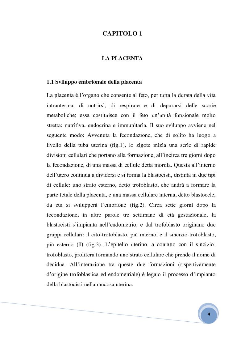 Anteprima della tesi: Fisiopatologia e aspetto immunoistochimico della mola vescicolare, Pagina 2