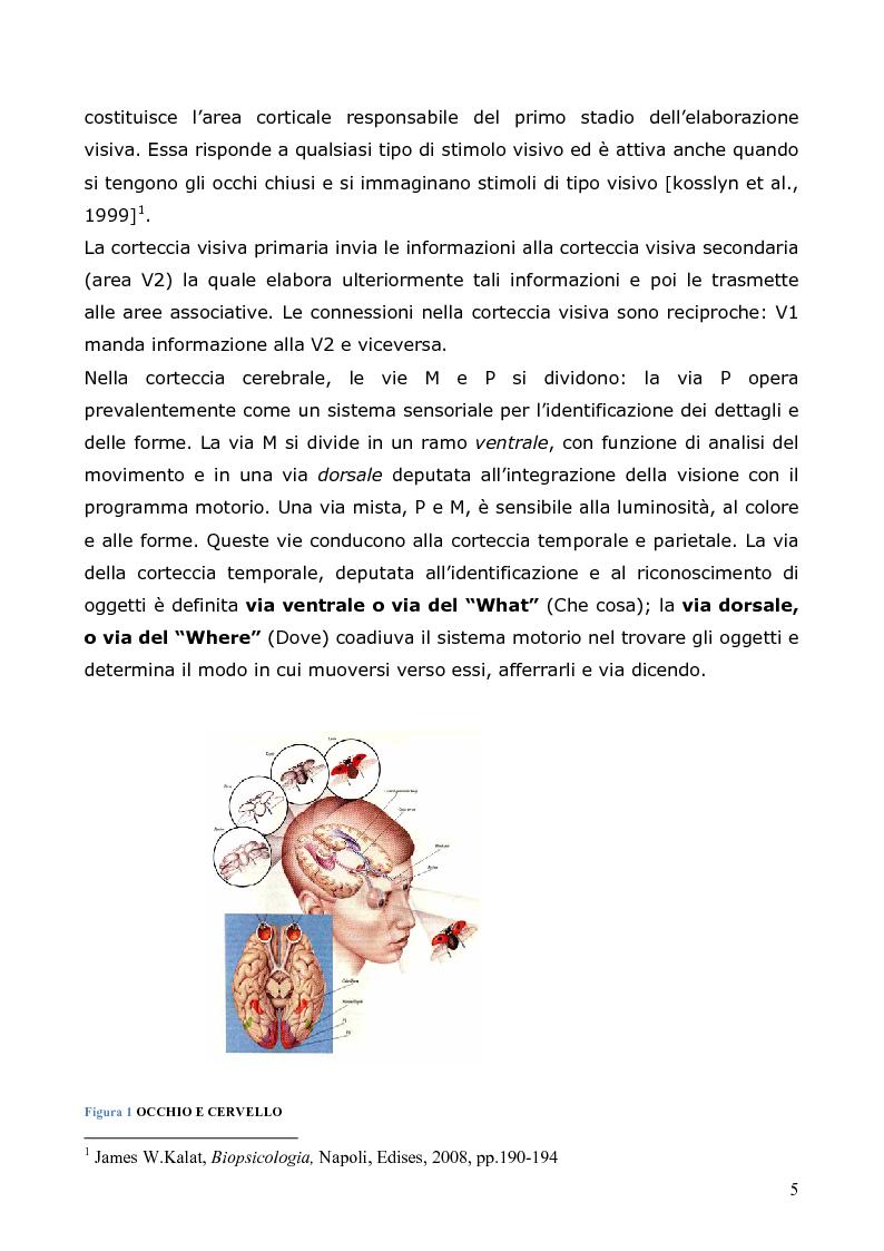 Anteprima della tesi: Neuropsicologia della lettura e dislessia evolutiva, Pagina 6