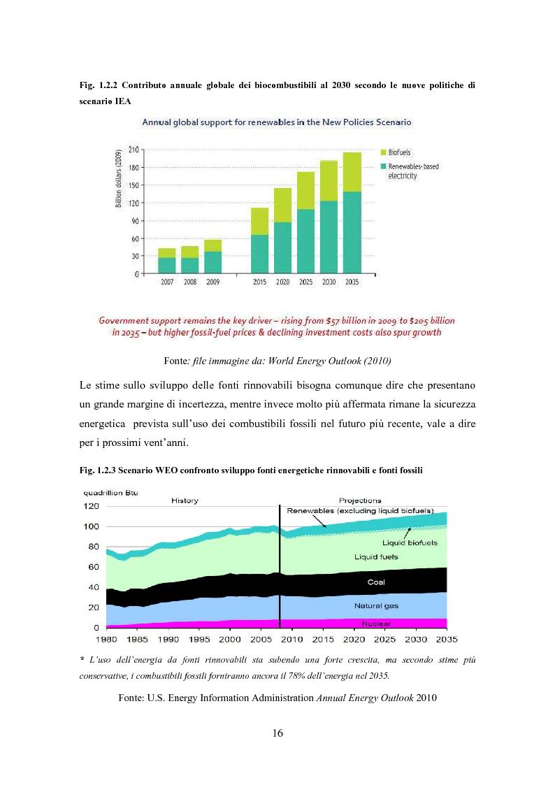 Anteprima della tesi: La biomassa: una FER a rapido sviluppo. Studio della filiera a oli vegetali e sulla sostenibilità ambientale ed energetica dei biocombustibili., Pagina 13