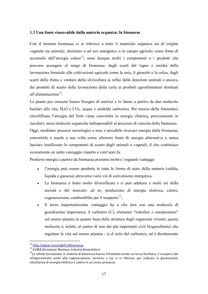 Anteprima della tesi: La biomassa: una FER a rapido sviluppo. Studio della filiera a oli vegetali e sulla sostenibilità ambientale ed energetica dei biocombustibili., Pagina 14
