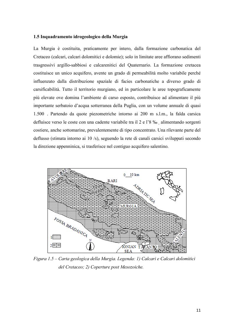 Anteprima della tesi: Analisi multitemporale (1815-2010) delle variazioni dell'uso del suolo (Murgia, Puglia): conseguenze sulle risorse idriche sotterranee, Pagina 10