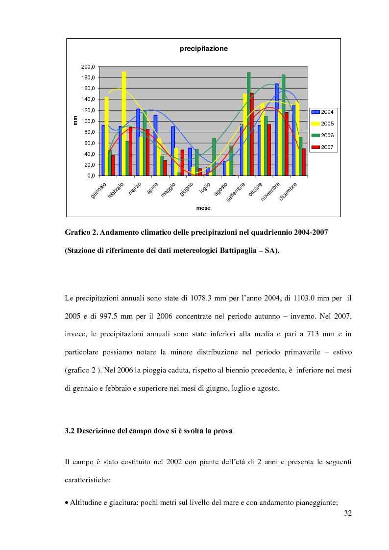 Anteprima della tesi: Olivicoltura intensiva: confronto tra due cv deboli (FS-17, I77) e in combinazione di innesto con due cv autoctone (Ravece e Carpellese), Pagina 5