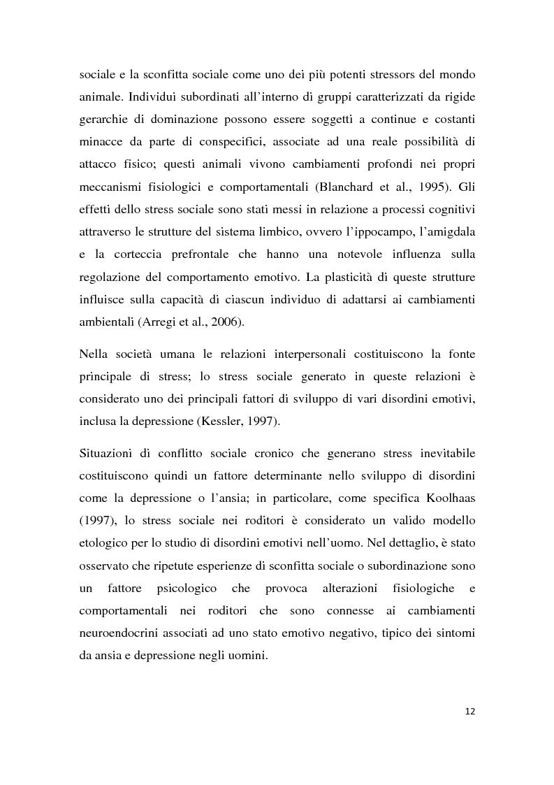 Anteprima della tesi: Effetti degli inibitori della fosfodiesterasi-5 (PDE-5) sul comportamento agonistico e sessuale in un modello animale, Pagina 9