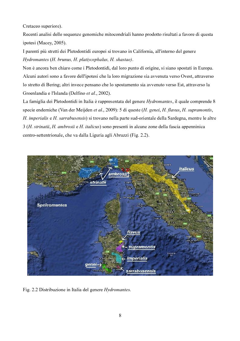 Anteprima della tesi: Caratteristiche delle Grotte e Distribuzione dei Geotritoni (Hydromantes italicus, Amphibia) sull'Appennino Toscano, Pagina 6