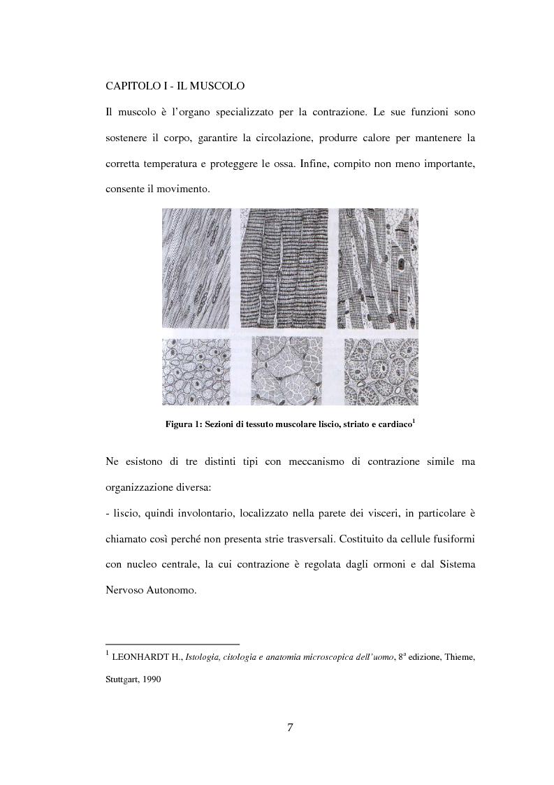 Anteprima della tesi: Efficacia del Pompage nel trattamento riabilitativo delle Distrofie Facio Scapolo Omerali, Pagina 4