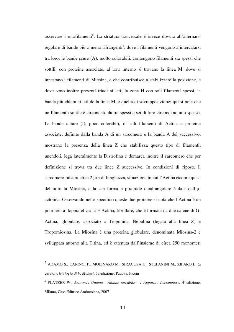 Anteprima della tesi: Efficacia del Pompage nel trattamento riabilitativo delle Distrofie Facio Scapolo Omerali, Pagina 7
