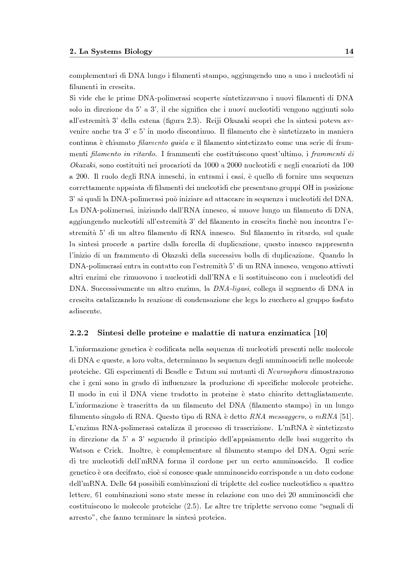 Anteprima della tesi: Modellazione dinamica e strumenti per la valutazione sperimentale del comportamento della via EGFR-IGF1R per la linea cellulare H1650, Pagina 8