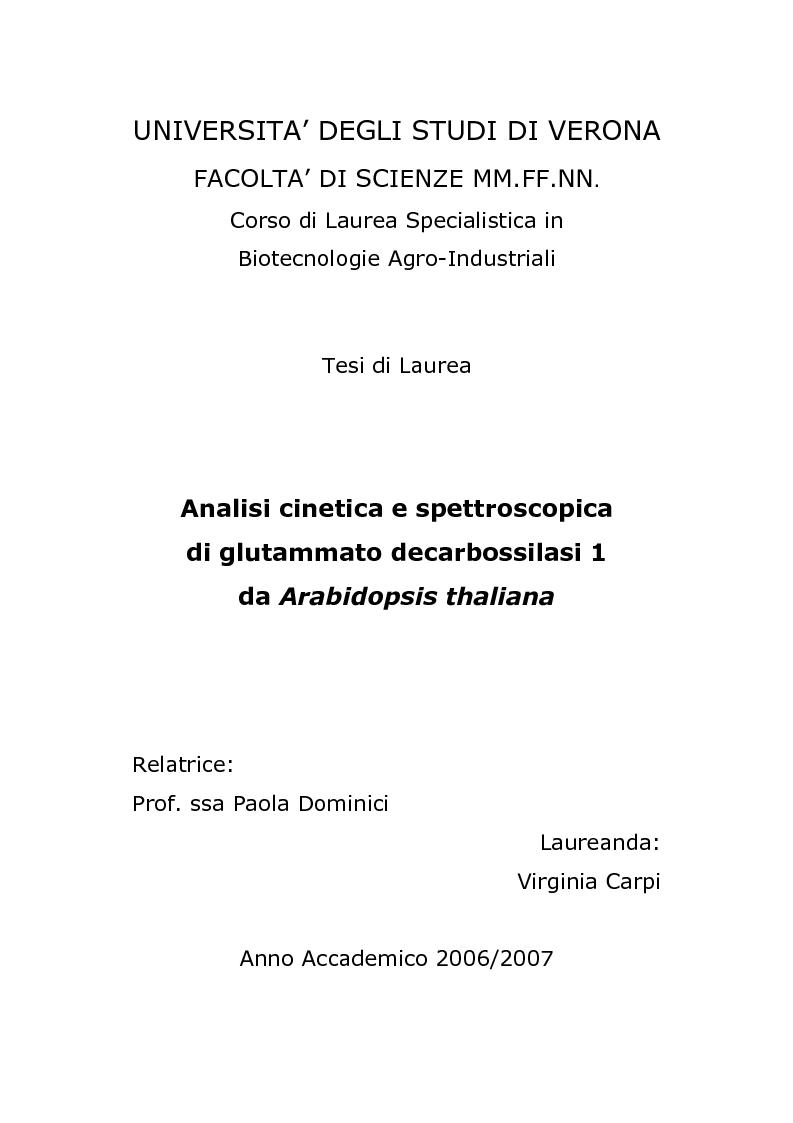 Anteprima della tesi: Analisi cinetica e spettroscopica di glutammato decarbossilasi 1 da Arabidopsis thaliana, Pagina 1