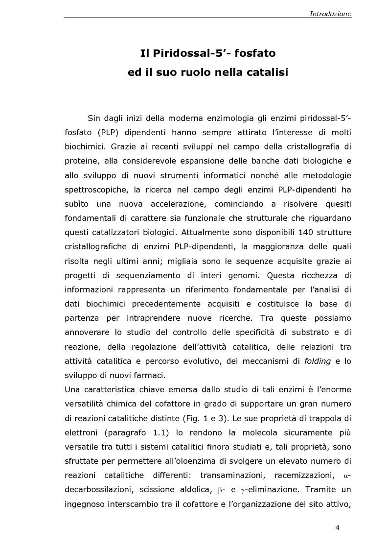 Anteprima della tesi: Analisi cinetica e spettroscopica di glutammato decarbossilasi 1 da Arabidopsis thaliana, Pagina 2