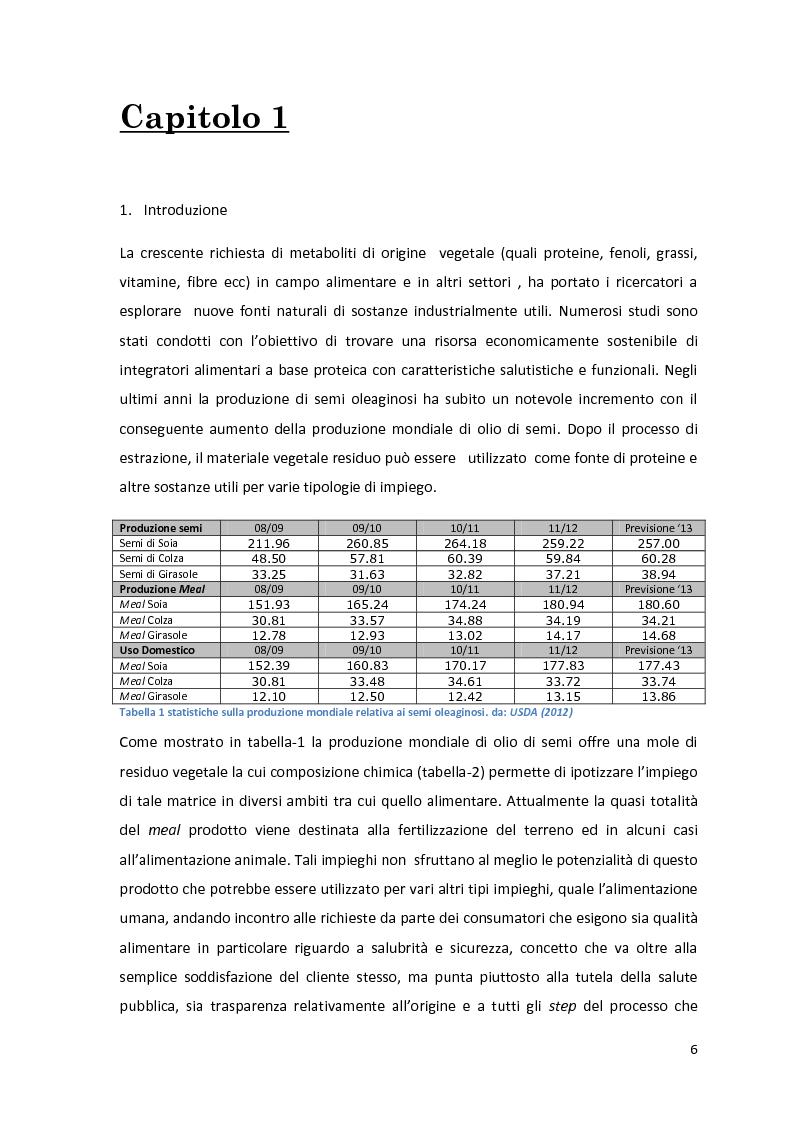 Anteprima della tesi: Impiego industriale dei panelli proteici derivanti da semi oleaginosi, Pagina 2