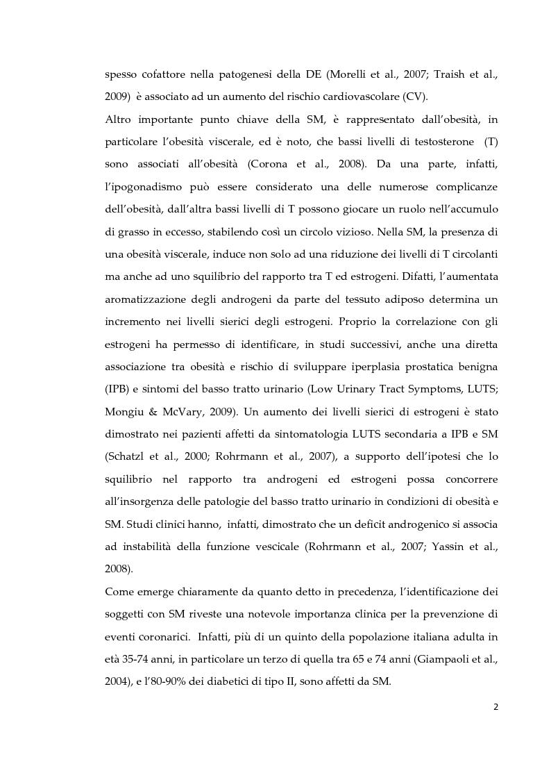 Anteprima della tesi: Effetto di due diversi trattamenti farmacologici sull'alterazione della vescica in un modello animale di Sindrome Metabolica, Pagina 3