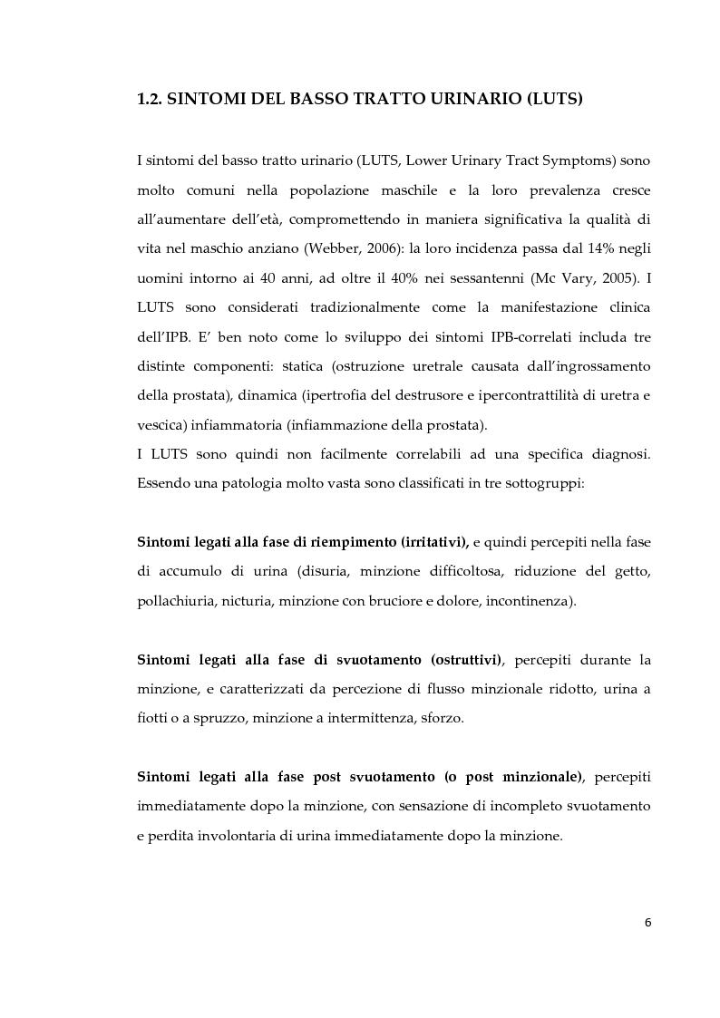 Anteprima della tesi: Effetto di due diversi trattamenti farmacologici sull'alterazione della vescica in un modello animale di Sindrome Metabolica, Pagina 7