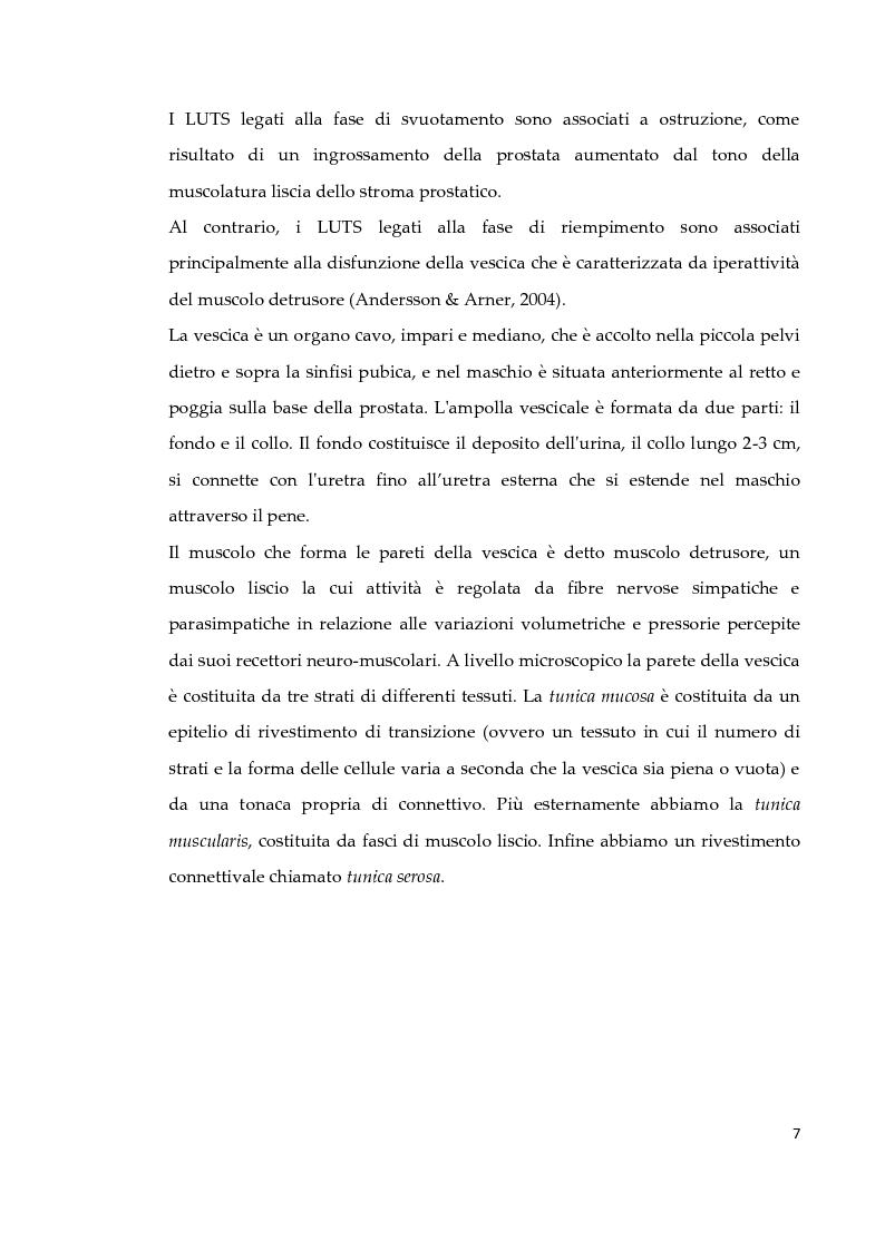 Anteprima della tesi: Effetto di due diversi trattamenti farmacologici sull'alterazione della vescica in un modello animale di Sindrome Metabolica, Pagina 8