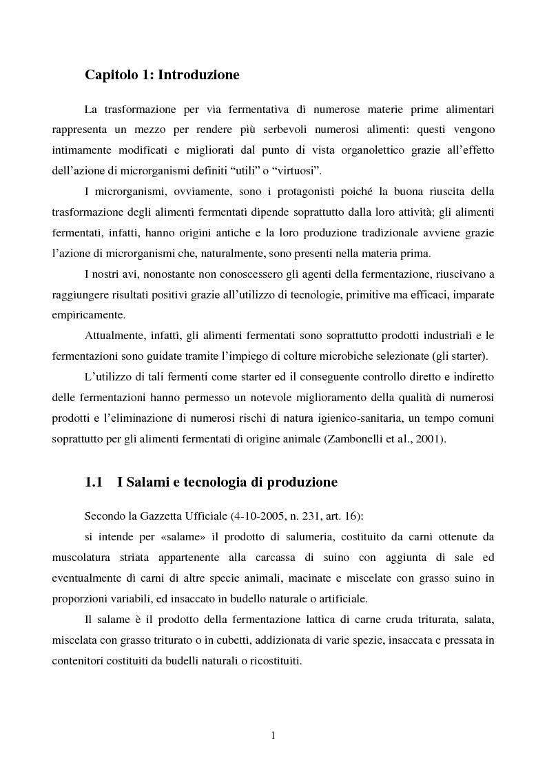 Anteprima della tesi: Effetti degli starter e delle condizioni di maturazione su salami tipici, Pagina 2