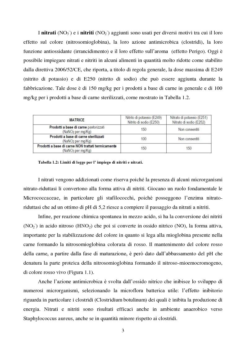 Anteprima della tesi: Effetti degli starter e delle condizioni di maturazione su salami tipici, Pagina 4