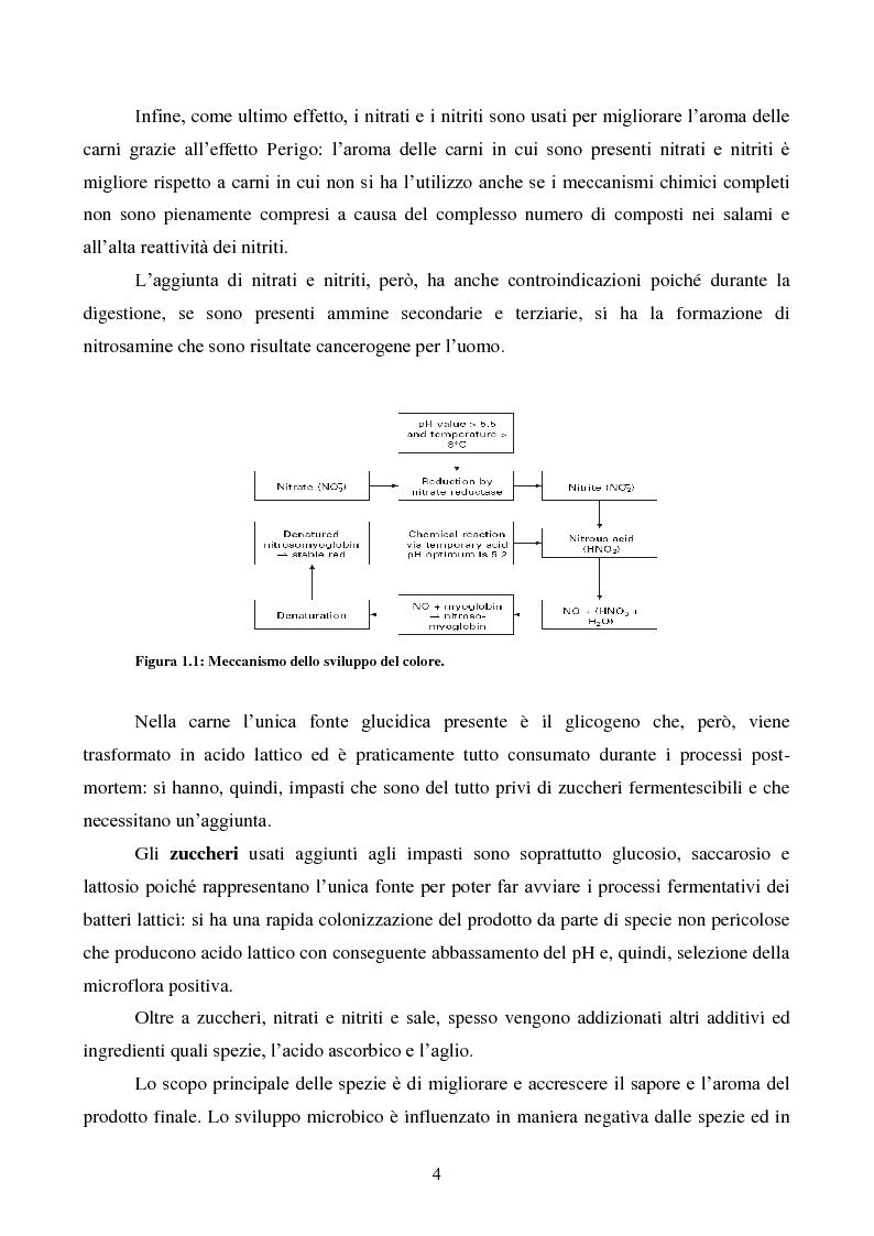 Anteprima della tesi: Effetti degli starter e delle condizioni di maturazione su salami tipici, Pagina 5