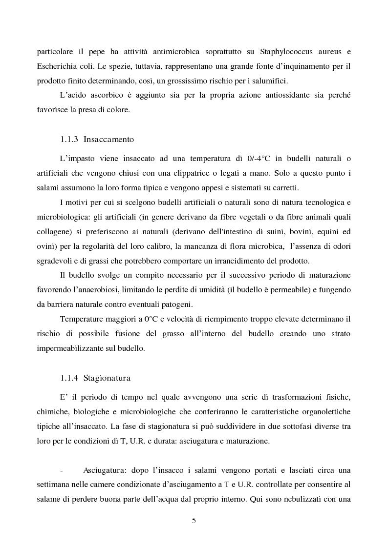 Anteprima della tesi: Effetti degli starter e delle condizioni di maturazione su salami tipici, Pagina 6