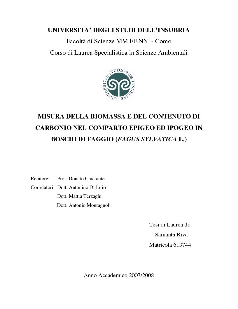 Anteprima della tesi: Misura della biomassa e del contenuto di carbonio nel comparto epigeo ed ipogeo in boschi di faggio (Fagus sylvatica L.), Pagina 1