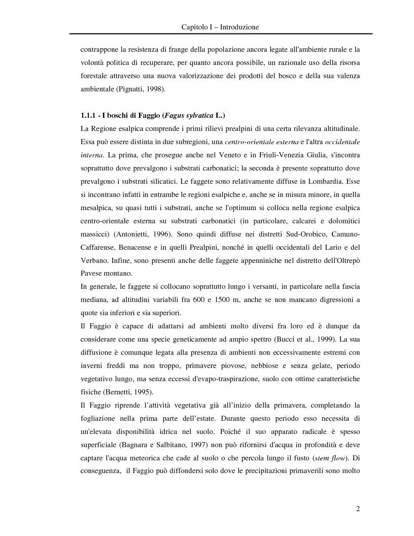 Anteprima della tesi: Misura della biomassa e del contenuto di carbonio nel comparto epigeo ed ipogeo in boschi di faggio (Fagus sylvatica L.), Pagina 3