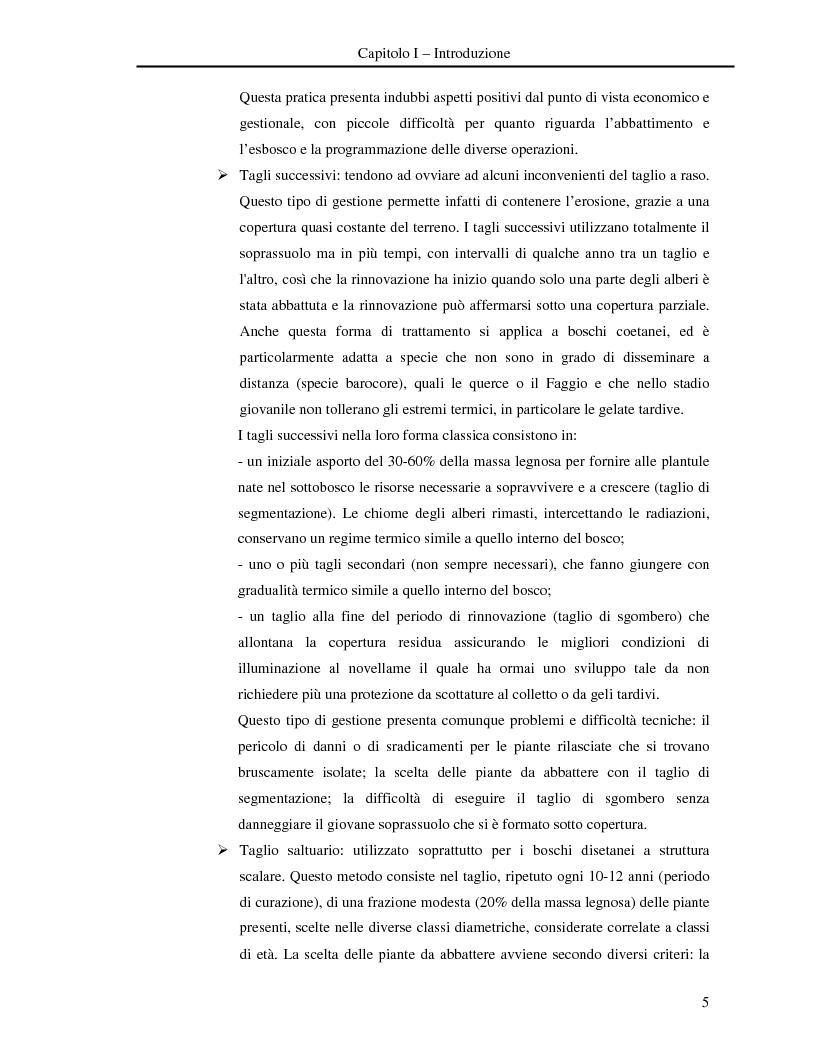 Anteprima della tesi: Misura della biomassa e del contenuto di carbonio nel comparto epigeo ed ipogeo in boschi di faggio (Fagus sylvatica L.), Pagina 6