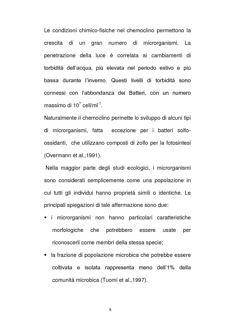 Anteprima della tesi: Batteri ed Archea Del Lago di Faro studiati mediante la Fluorescence in situ Hybriditation (FISH), Pagina 6