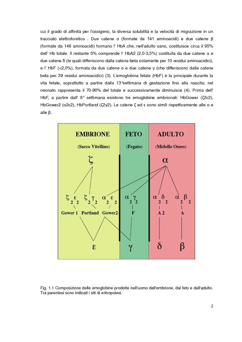 Anteprima della tesi: Screening biochimico e molecolare del gene HBB: confronto tra differenti metodologie di analisi, Pagina 3