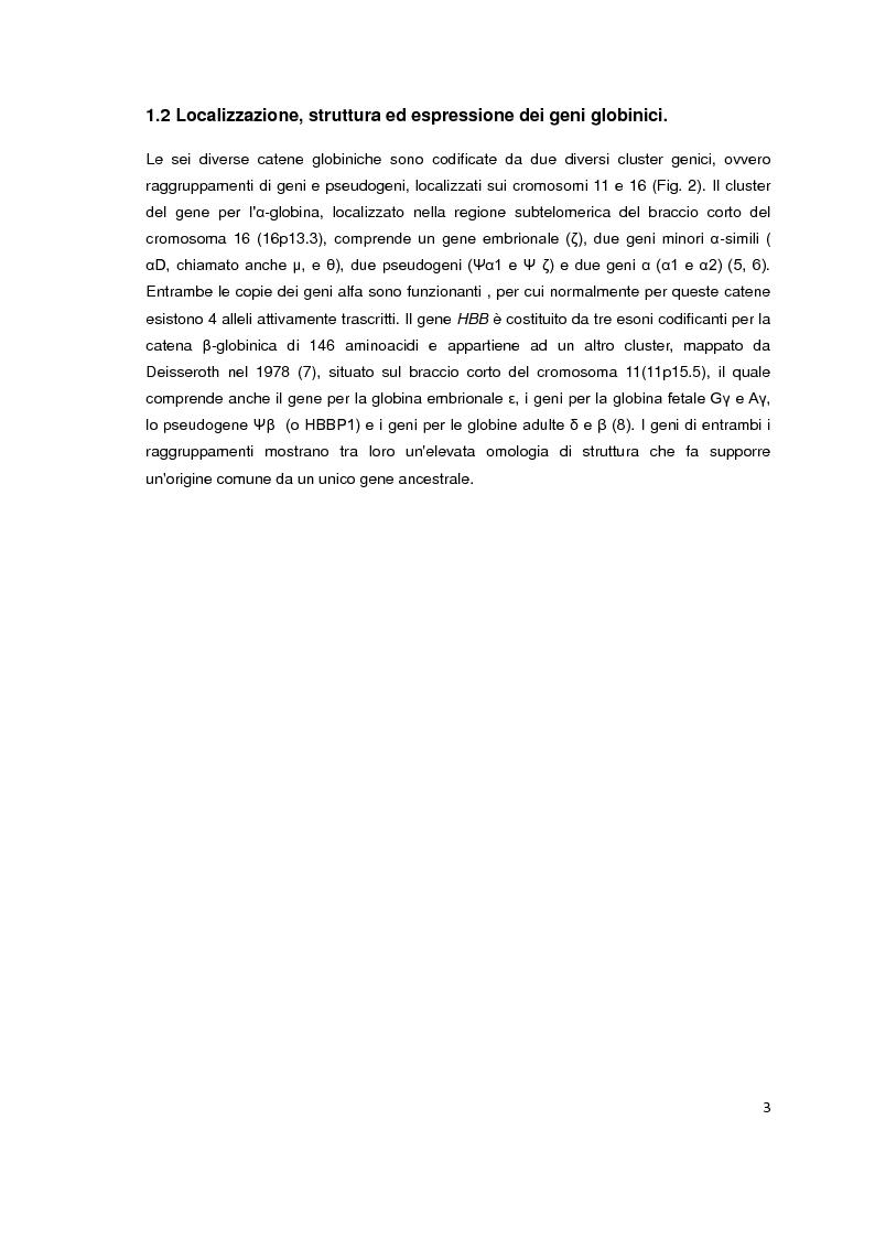 Anteprima della tesi: Screening biochimico e molecolare del gene HBB: confronto tra differenti metodologie di analisi, Pagina 4
