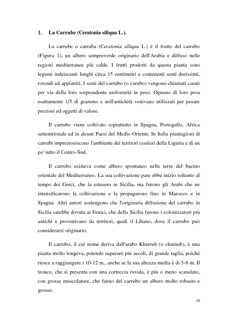 Anteprima della tesi: Isolamento di una nuova malico deidrogenasi da semi di Ceratonia siliqua L. con possibili impieghi in campo biotecnologico, Pagina 3