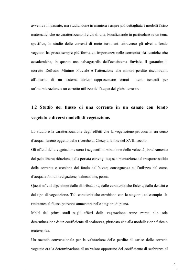Anteprima della tesi: Misure su canali vegetati: taratura di un nuovo sistema di misura delle velocità istantanee e primi risultati, Pagina 3