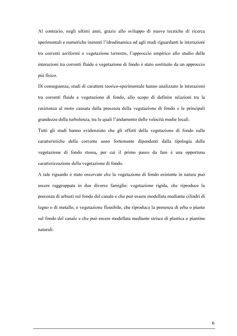 Anteprima della tesi: Misure su canali vegetati: taratura di un nuovo sistema di misura delle velocità istantanee e primi risultati, Pagina 5