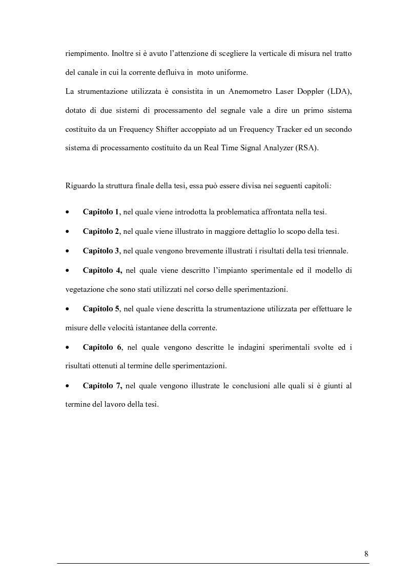 Anteprima della tesi: Misure su canali vegetati: taratura di un nuovo sistema di misura delle velocità istantanee e primi risultati, Pagina 7