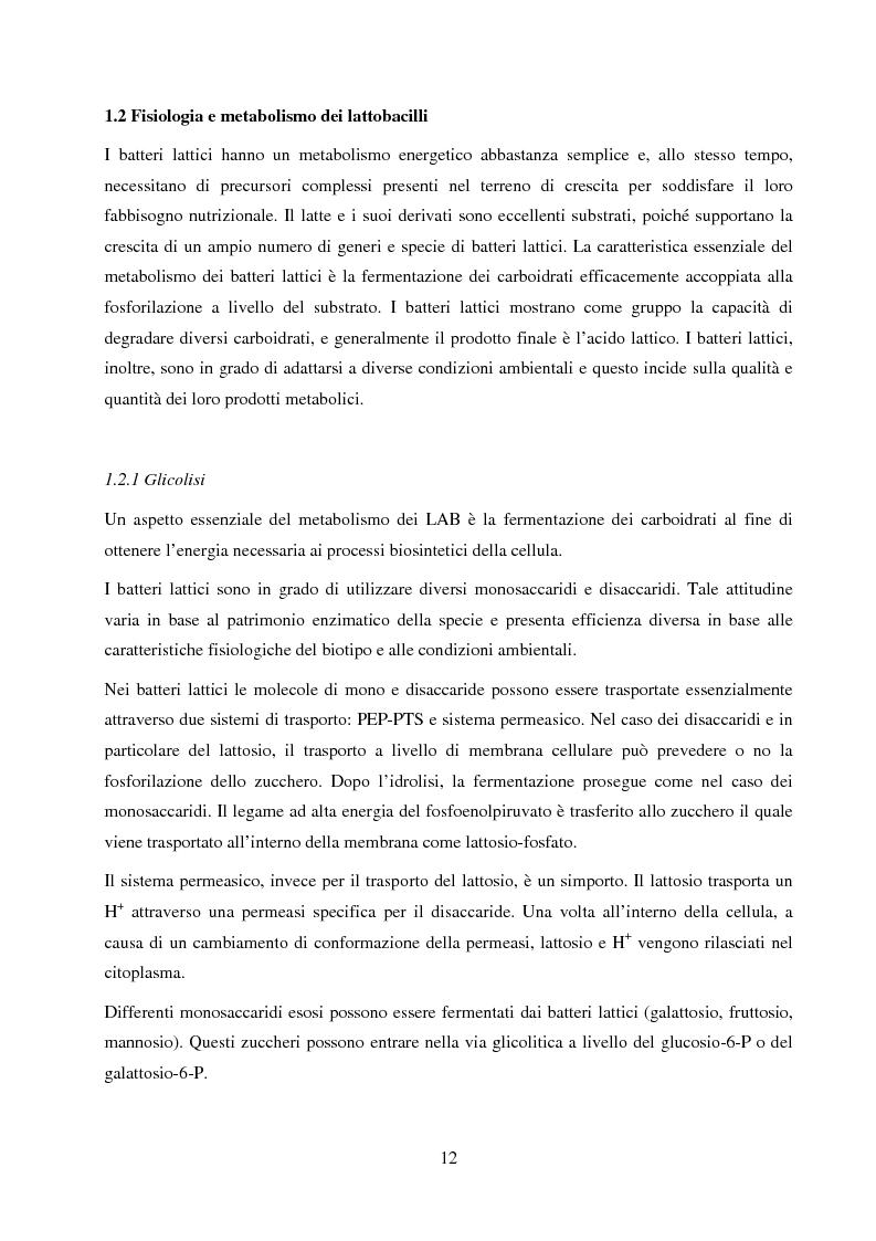 Anteprima della tesi: Valutazione del potenziale probiotico di ceppi di Lactobacillus isolati da Parmigiano-reggiano mediante screening sottrattivo, Pagina 13