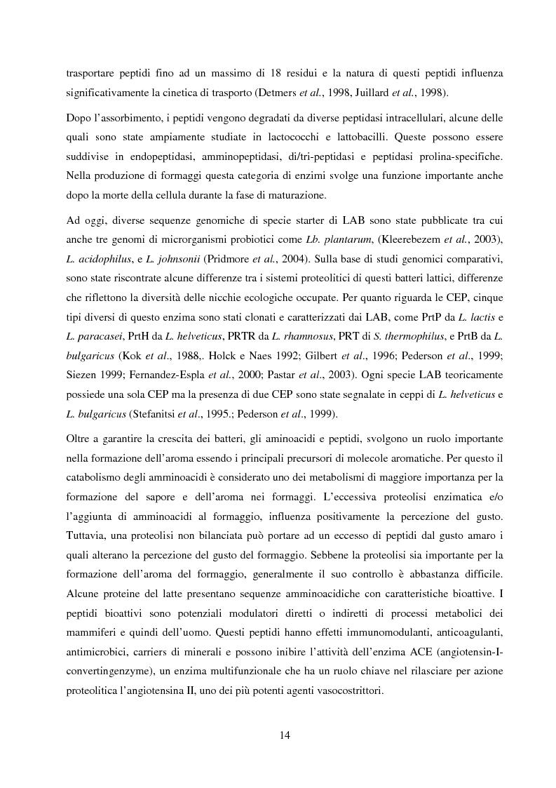 Anteprima della tesi: Valutazione del potenziale probiotico di ceppi di Lactobacillus isolati da Parmigiano-reggiano mediante screening sottrattivo, Pagina 15