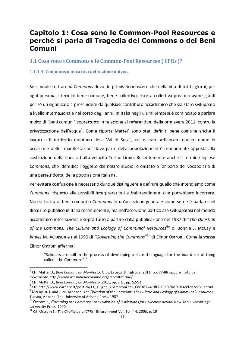 Anteprima della tesi: Oltre la Tragedia dei Beni Comuni: La gestione delle Common-Pool Resources e il Bosco delle Sorti della Partecipanza di Trino, Pagina 8