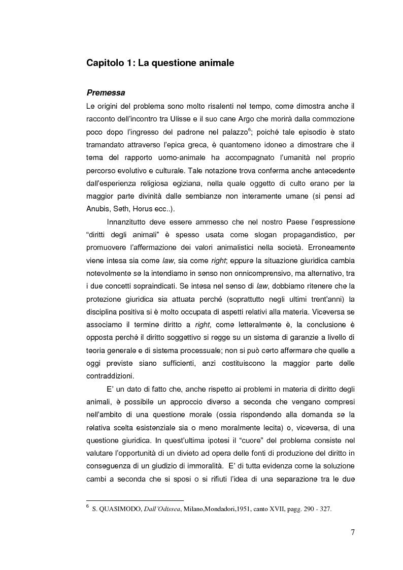 Anteprima della tesi: Il diritto animale. Principi e contraddizioni del sistema., Pagina 4