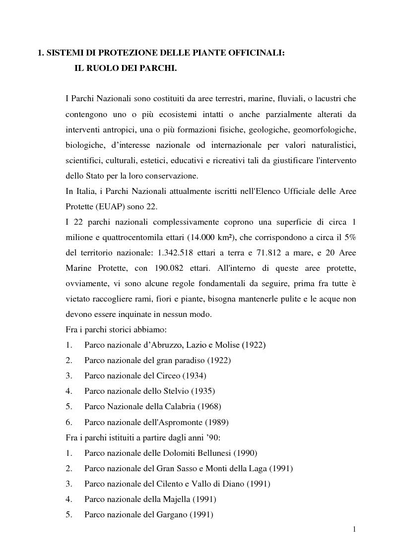 Anteprima della tesi: Indagine conoscitiva sulla flora spontanea a destinazione erboristica nel Parco Nazionale dell'Alta Murgia, Pagina 2